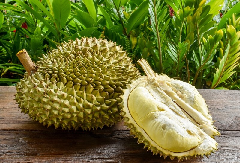 Durian fruit on a table