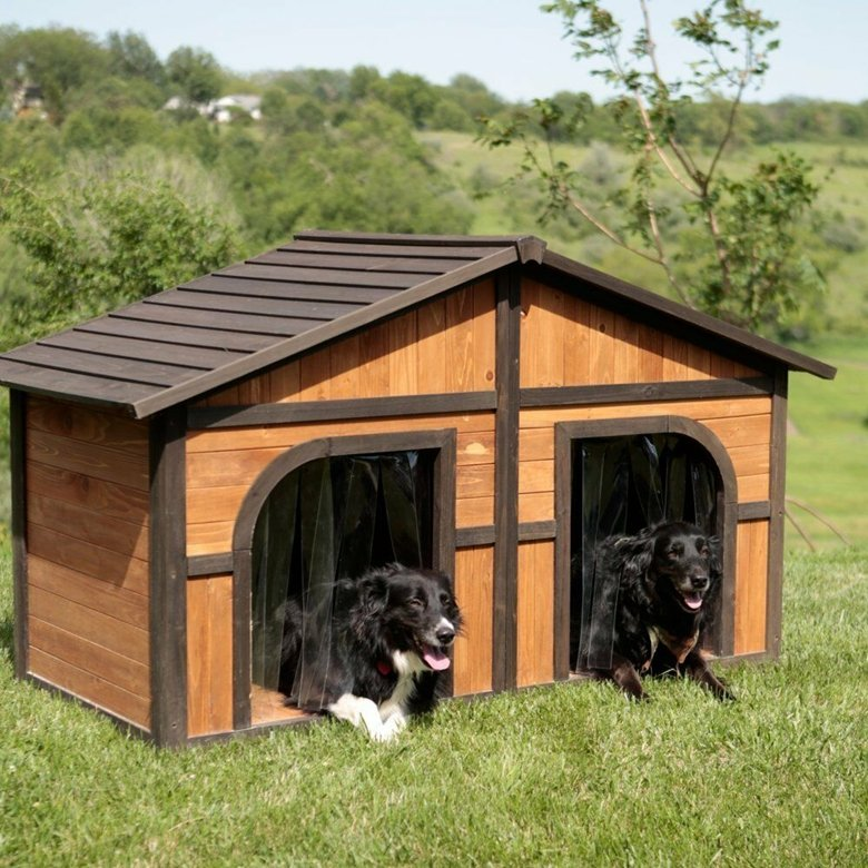 Merry Products Extra large Dog house for 2 dogs